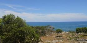 Home For Sale, La Isabela