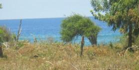Land in Sold  La Isabela