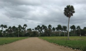 SITE FOR SALE, LAND FOR SALE