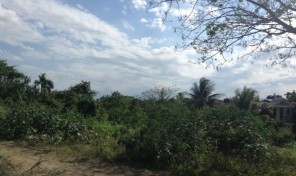 SITE FOR SALE / LAND FOR SALE